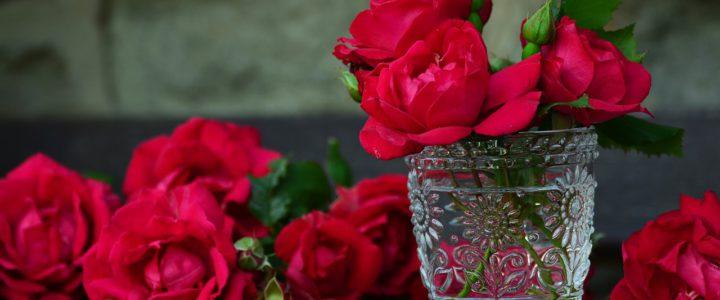 Bloemen voor de dood